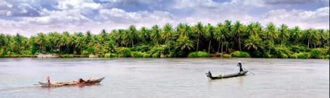 Coconut island in Ben Tre