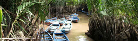 Rowing sampan in small canals in mekong