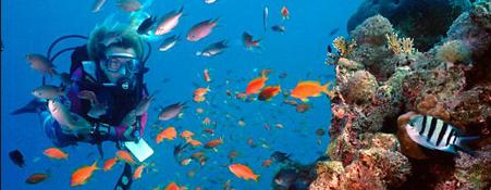 Scuba diving in Nhatrang