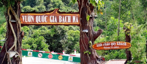 Bachma National Park